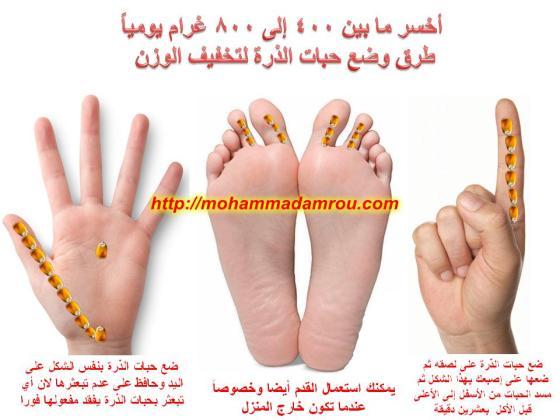 شرح وضعية حبات الذرة للتخسيس محمد رضى عمرو