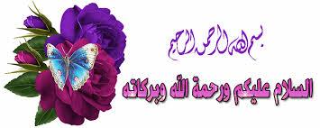 السلام عليكم كتاب السوجوك محمد رضى عمرو
