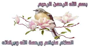 محمد رضى عمرو